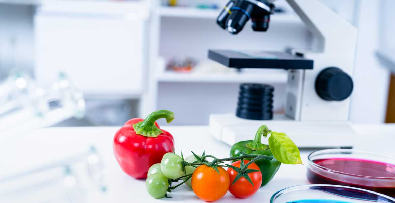 Corsi per addetti delle aziende alimentari ai sensi DGRT 559/2008 – HACCP